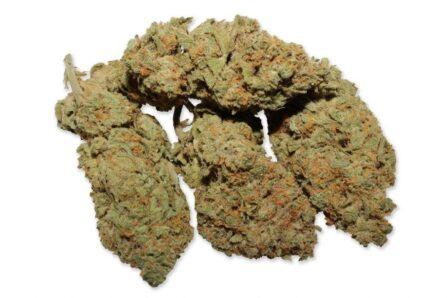 Buy White Widow Strain Online, White Widow marijuana Strain, white widow strain, White Widow Strain For Sale, White Widow weed Strain