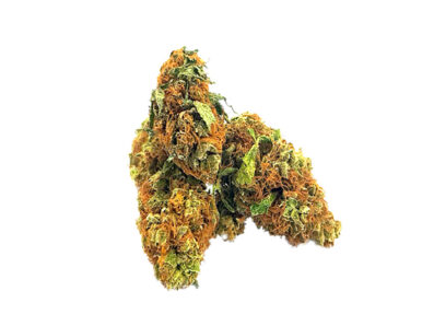amnesia haze auto grow, amnesia haze auto grow journal, Amnesia Haze for sale, Amnesia Haze for sale on craigslists, amnesia haze grow journal, amnesia haze marijuana-seeds, Amnesia Haze products for sale, amnesia haze review, best online store to purchase Amnesia Haze, buy Amnesia Haze in all 50 states, buy Amnesia Haze in canada, buy Amnesia Haze in texas, Buy Amnesia Haze Online, buy Amnesia Haze out door grow, buy Amnesia Haze relaible plug, buy Amnesia Haze weed online uk, buy Amnesia Haze without a medical card, buy illegal Amnesia Haze online, buy medical Amnesia Haze online california, buy moon rock adelaide, buy moon rock online canada, buy painkiller, Buy quality Amnesia Haze for cheap, craigslist weed for sale, descreet Amnesia Haze delivery, growing amnesia haze, high times weed for sale, how to grow amnesia haze indoors, i want to buy Amnesia Haze, k2 weed for sale, legal weed for sale Cheap, Legal Weed For Sale Online, legal weed for sale UK, legit amnesia haze online, most relaible site to buy Amnesia Haze online, online store Amnesia Haze, reliable amnesia haze, soma amnesia haze flowering time, synthetic Amnesia Haze for sale, weed buds for sale Online, weed buds for sale UK, weed for sale, weed for sale AU, weed for sale online real weed for sale, weed online for sale, what is snoop dogg's favorite strain, what makes a haze strain, where is the most secured site to buy Amnesia Haze online, where to buy Amnesia Haze in sydney