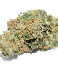 420 MAIL ORDER, 420 mail order Death Star worldwide, Asia, best place to buy Death Star Strain, Blackberry kush, Blue Dream, Buy Death Star kush online, Buy Death Star kush online Australia, Buy Death Star kush online Canada, Buy Death Star kush Online Europs, Buy Death Star kush online Findland, Buy Death Star kush online uk, Buy Death Star kush online USA, buy Death Star Strain california, buy Death Star Strain online cheap, buy Death Star Strain online usa, buy edibles online reddit, buy legal weed online, buy marijuana online, buy real marijuana online, buy real weed online, buy skunk online UK, buy synthetic weed online, buy weed online, buy weed online usa no medical card, Buying weed online, can you buy weed online, Canada, cheap legit online dispensary shipping worldwide, Death Star Kush for sale near me, Death Star Kush for sale Online Australia, Death Star Kush for sale Online Canada, Death Star Kush for sale Online Europe, Death Star Kush for sale Online UK, Death Star Kush for sale Online USA, Death Star reviews, DEATH STAR SEEDS, DEATH STAR STRAIN, Death Star Strain for sale near me, Death Star Strain online legit, DEATH STAR STRAIN SEEDS, DEATH STAR STRAIN YIELD, DEATH STAR WEED STRAIN, Discreet weed suppliers online, dispensaries that ship out of state, Europe, is it legal to buy edibles online, kush for sale, legal buds, legit online Kush Sales, Mail order marijuana, MARIJUANA CLONES FOR SALE, marijuana for sale, Marijuana for sale online, MMJ, OG KUSH, online dispensary edibles, online dispensary shipping, online dispensary shipping worldwide paypal, order cheap Death Star for sale online, Order Death Star Kush Online USA, Order Weed Online, Weed for sale in USA, weed for sale online, where can i order Death Star Strain online in USA, Where to Buy Death Star Kush online Uk