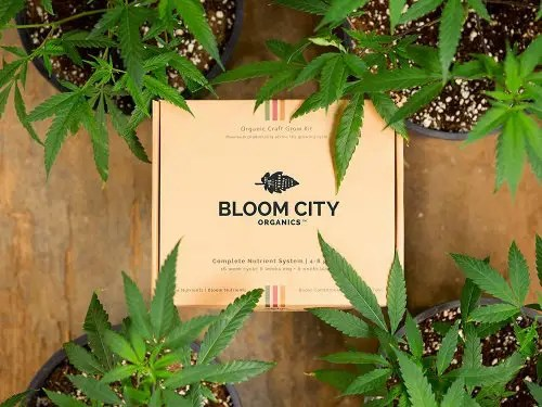bloom city nutrients