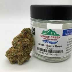 OSAGE Sugar Black Rose