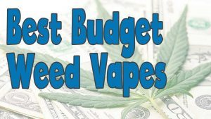 What's the Best Cheap Dry Herb Vaporizer?