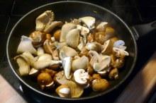 30.1.16 - Pilze,Kartoffelstampf,Salat,vegetarisch (2ea)