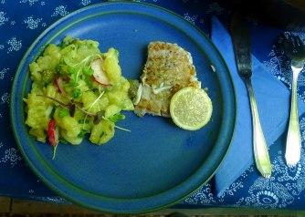5.6.16 - Kabeljau,Kartoffelsalat (11)