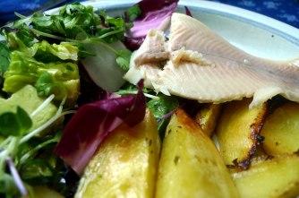 6.6.16 - Zitronenkartoffeln,Forelle,Salat (17)