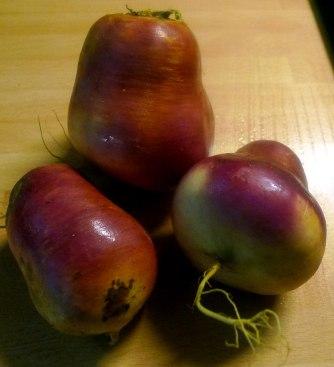 2.7.16 - Navets,Kartoffelstampf,ochiertes Ei (5)