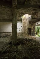 Nature fighting back in WWII ruins Maloelap, Marshall Islands