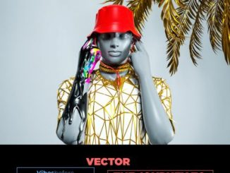 Vector – Vibes Before Teslim