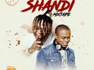 DJ MIX: Dj Yeankeyz - Shandi Shandi Kosere Mixtape