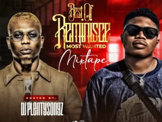 DJ Mix: DJ PlentySongz - Best Of Reminisce Most Wanted Mixtape