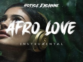 INSTRUMENTAL (AFRO LOVE)