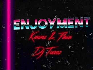 Kwamz And Flava Ft. DJ Tunez – Enjoyment