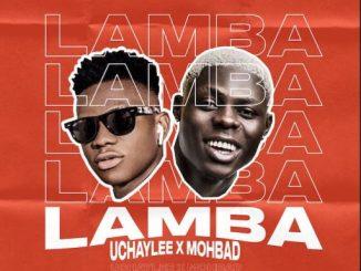Music: Uchaylee x Mohbad – Lamba