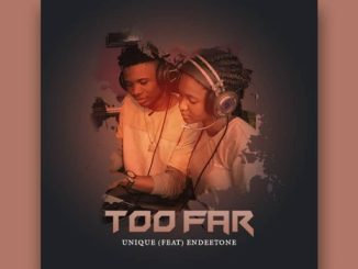 Music: Unique ft Endeetone - Too Far (Mixed by Samzzy)