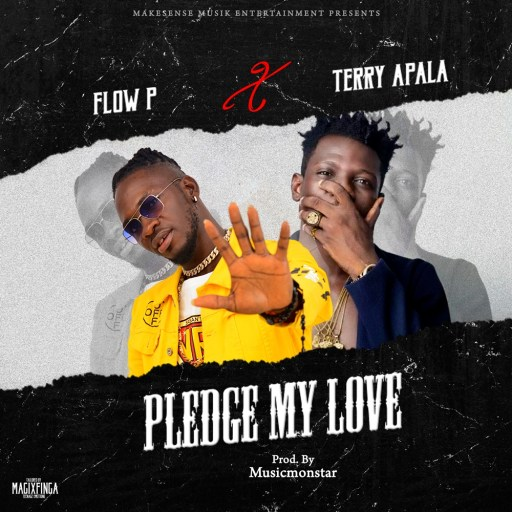 Music: Terry Apala x Flow P – Pledge My Love