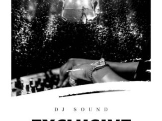 Dj Mix: DJ Sound – Exclusive Vibes Mix