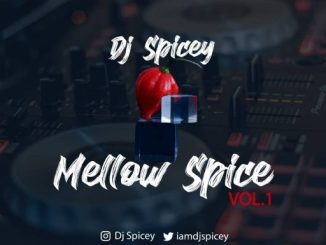 Dj Mix: Dj Spicey - Mellow Spice (The mix vol. 1)