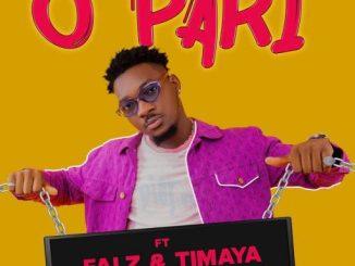 Dj Shawn – O Pari ft. Falz & Timaya