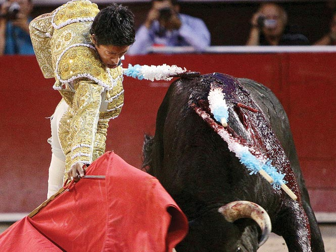 Sergio Flores redondeó su tarde con el último toro de la tarde, Bifer, al que le cortó las dos orejas en la Feria de San Marcos. Fotos: EFE