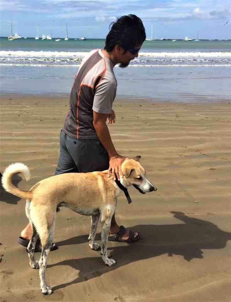 happy dog in San Juan Del Sur