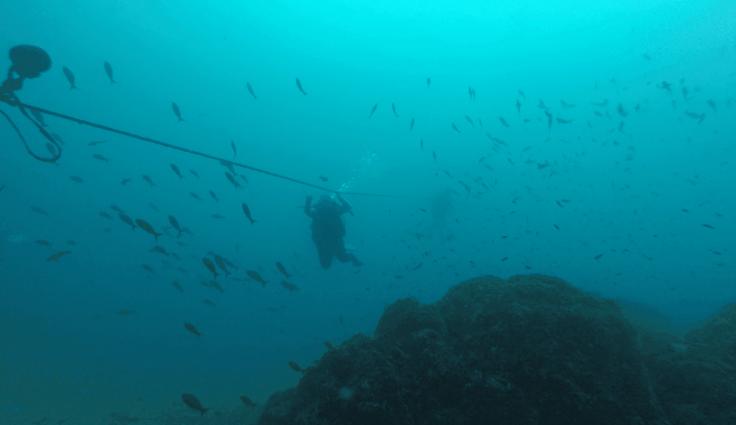 Decending the line in Coiba