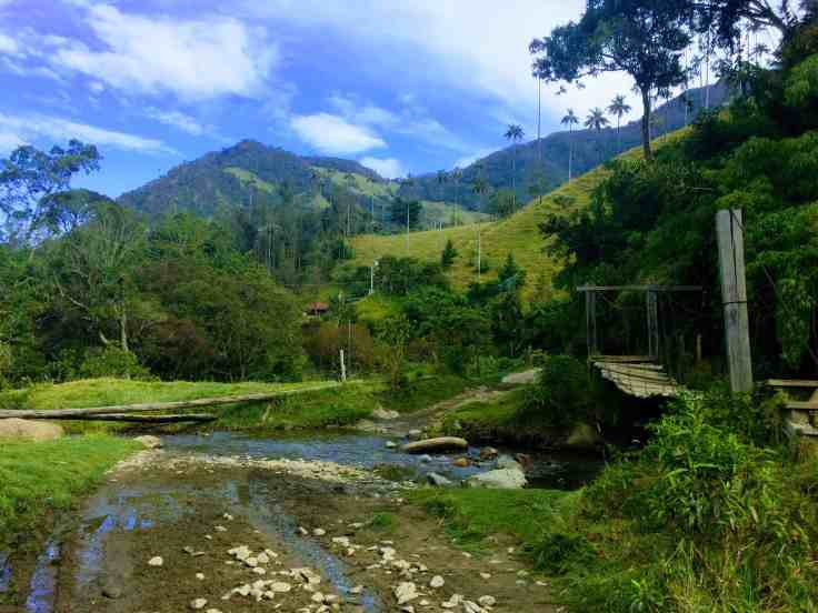 Cocora Valley, beautiful Colombia