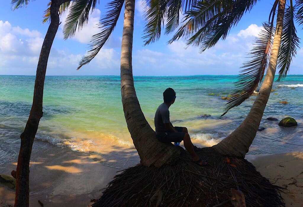 Sitting in a palm tree on the beach of Big Corn Island