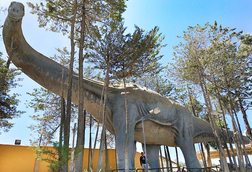 Dinosaur in Sucre, dinosaur footprints