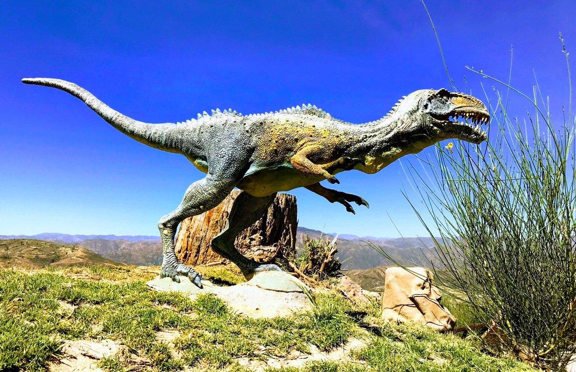 Cal Orcko Dinosaur Park, dinosaur footprints