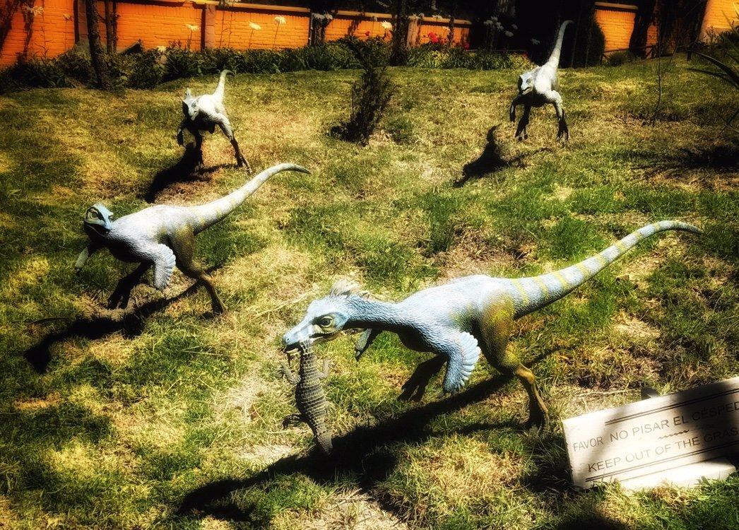 Dinosaur footprints replicas of dinos