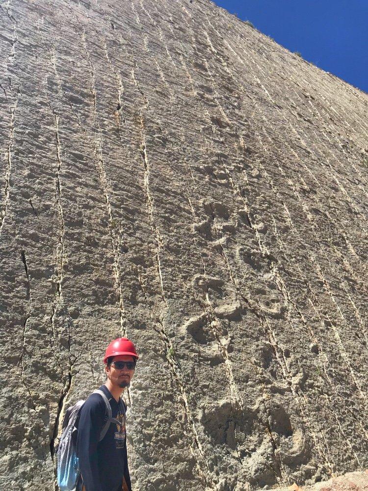 Dinosaur Footprints on the wall