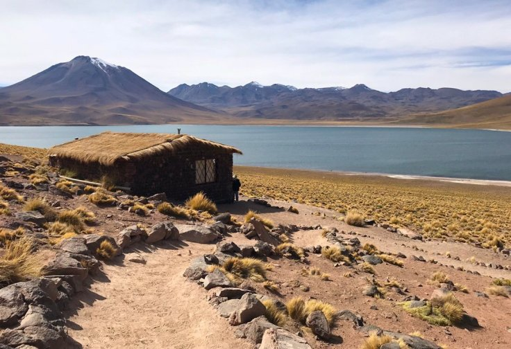 Laguna Miscanti of that Atacama