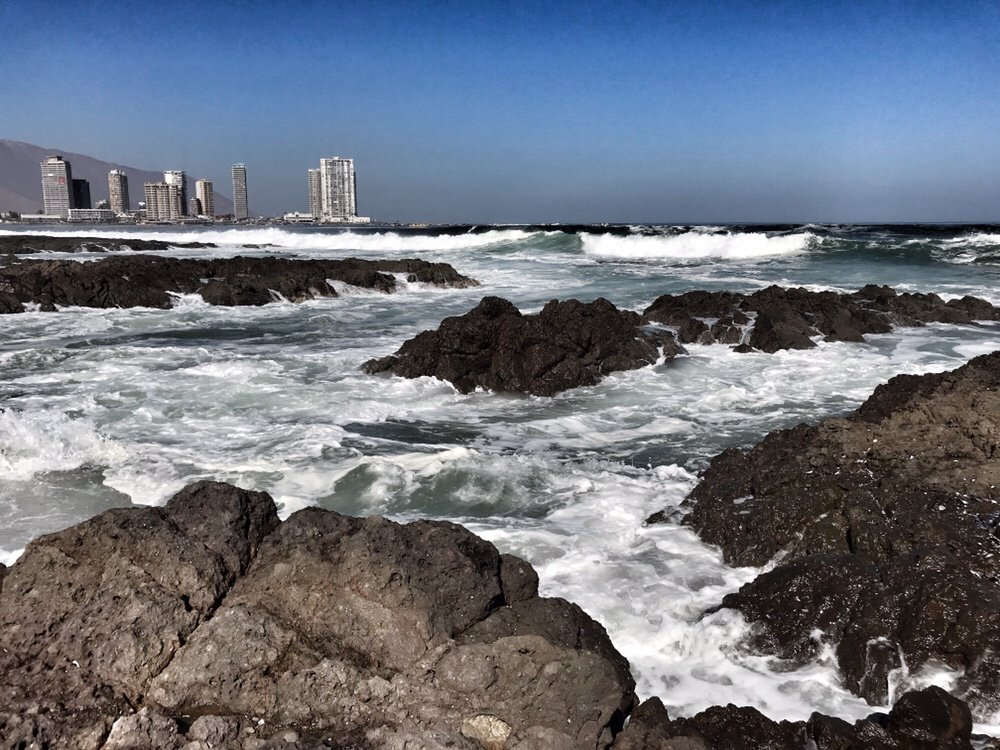 Iquique Coast, examples of resilience