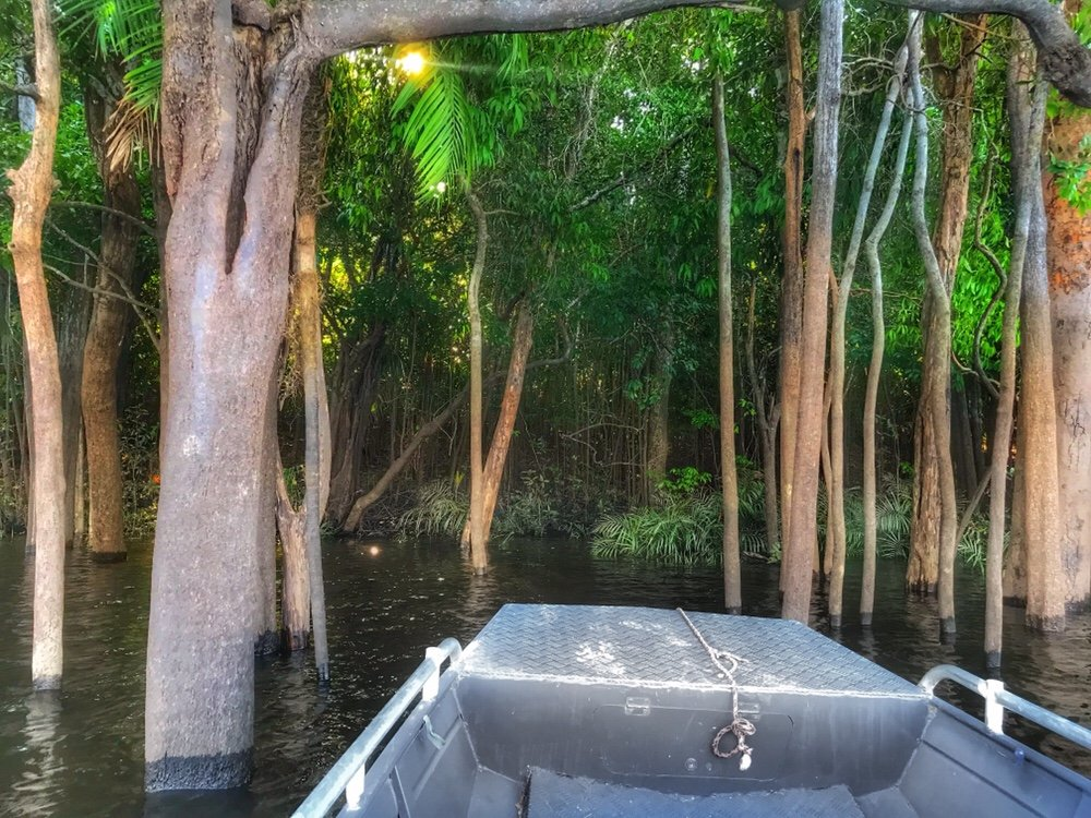 Fishing for Piranha on our Amazon Tours