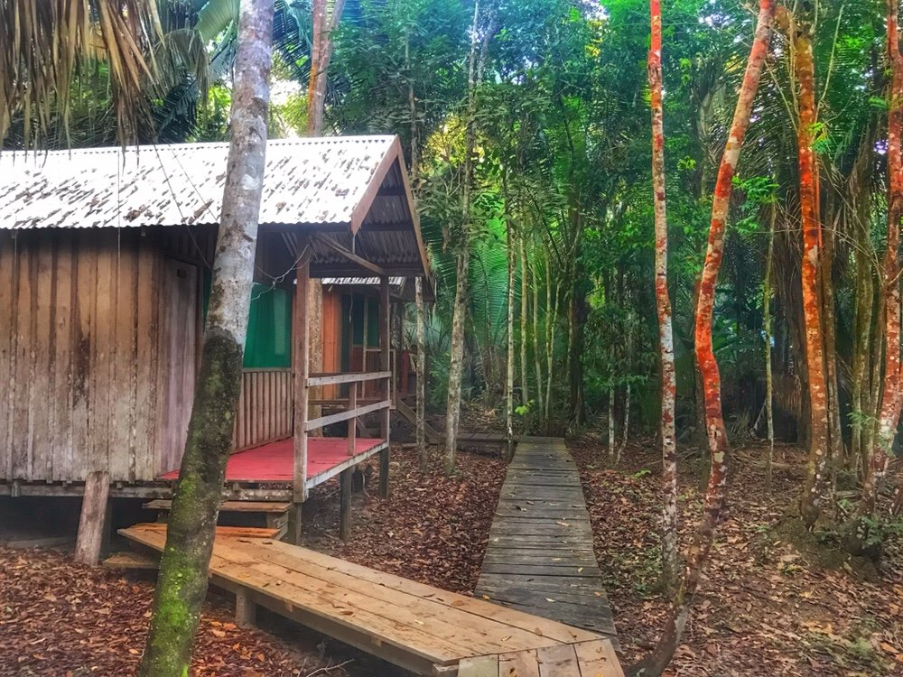 Lodge in the Amazon Tours