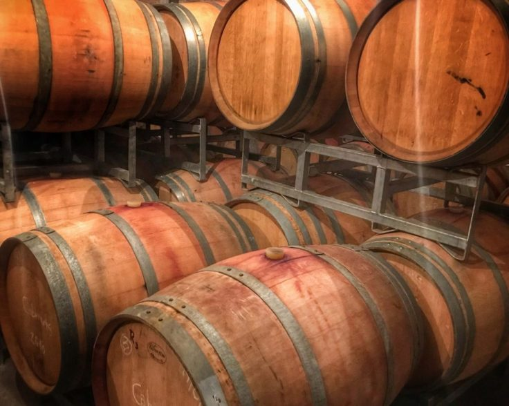 Wine Barrels in Mendoza