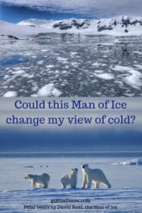 Pin for the man of ice, David Reid