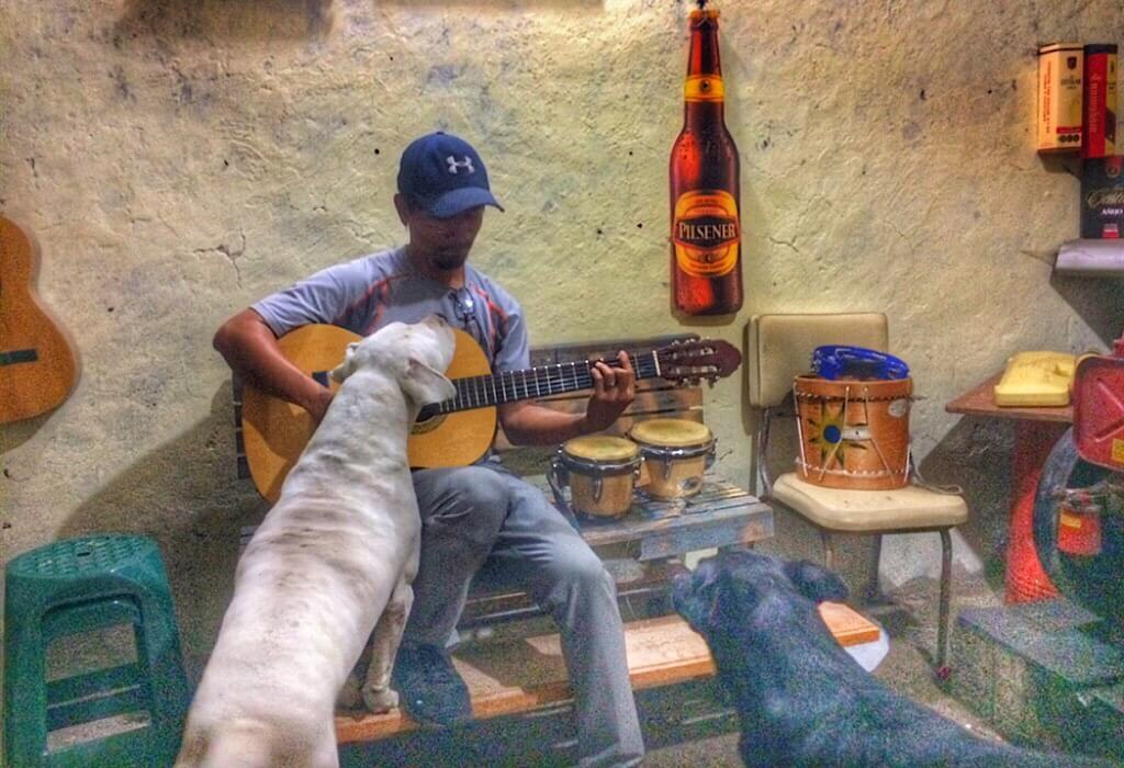 The dogs liked to listen to Trin on the guitar as much as I did
