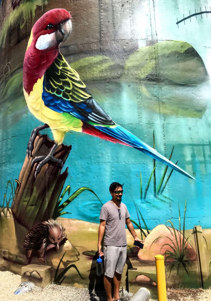Silo art of a bird in Lockhart New South Wales Australia