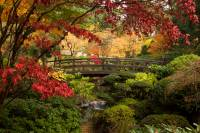 Gem of the Pacific Northwest: The Portland Japanese Garden ...