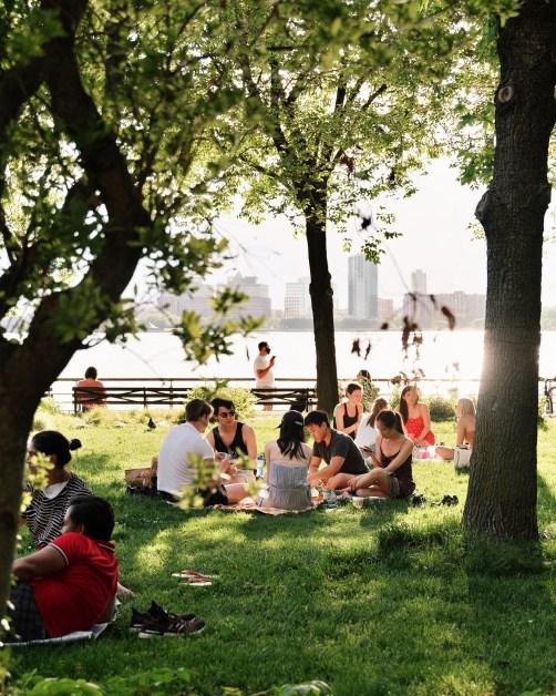 Picnic People Hudson River New York