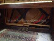 PianoforteCHEMNITZER PIANOHAUS BRADER & MUNCH00003