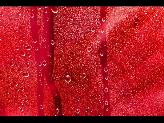 13_Red Rain Day_Barry Noon_(-)