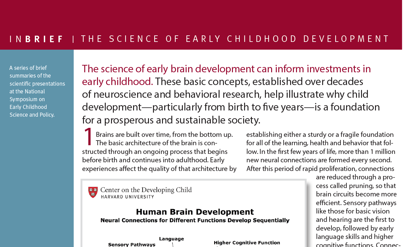 How Adverse Experiences Affect Early Chidhood Development