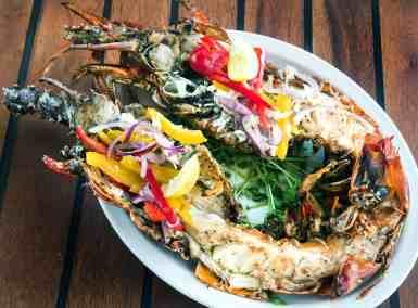 lobster-at-473