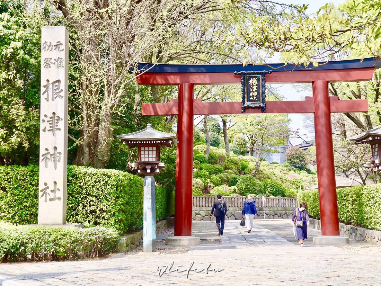 東京自由行-根津神社 在幽靜的神社內漫步 享受沒有杜鵑花的根津神社