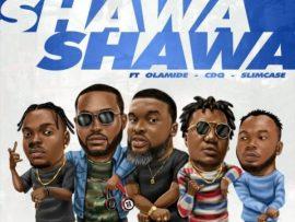 DJ Neptune & Larry Gaaga ft. Olamide, CDQ & Slimcase – Shawa Shawa