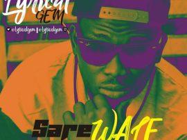 Lyrical Gem - Sare Wale