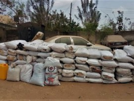 NDLEA seizes 73 bags of cannabis in Osun State?ahead of the 2019 general elections