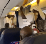 Nigerians Plead The Blood of Jesus On Plane As Ooni of Ife's Diviner Performs Traditional Rite On Flight [Video]